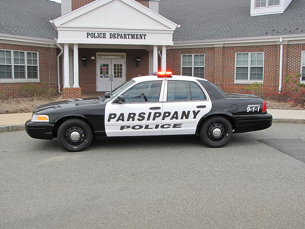 Parsippany NJ Theft Crime Lawyers
