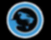 e sports blue icon.png
