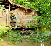 Traditional Mekong Delta house