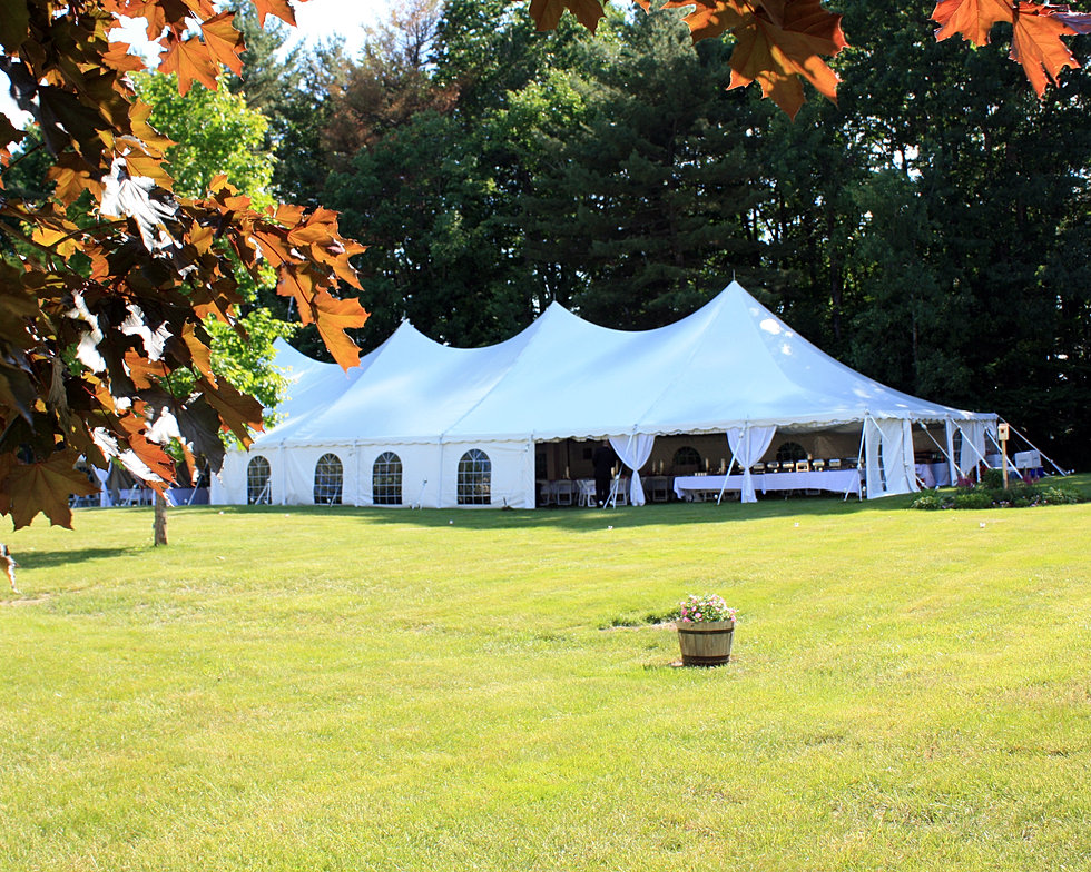 Affordable tent wedding