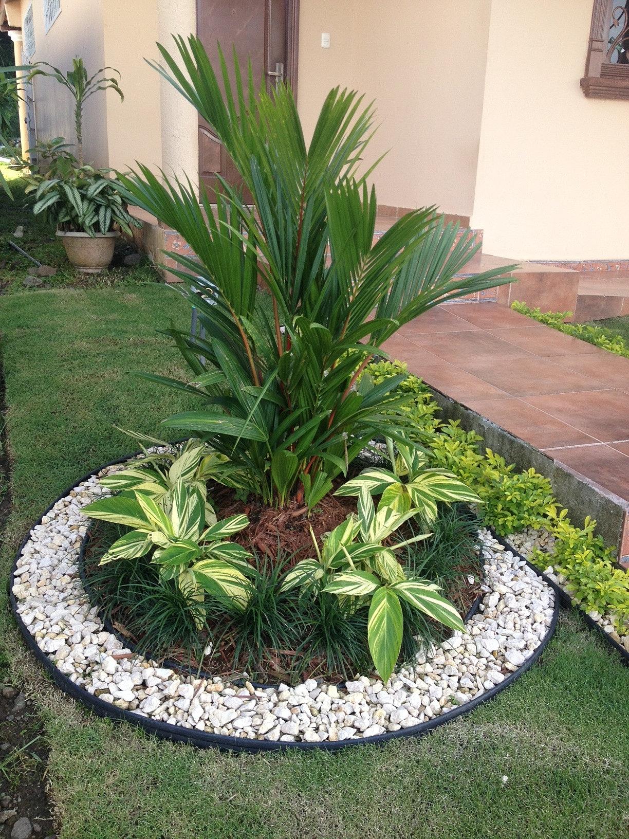 imagens jardins modernos : imagens jardins modernos:Diseño y Construcción de jardines en Panamá