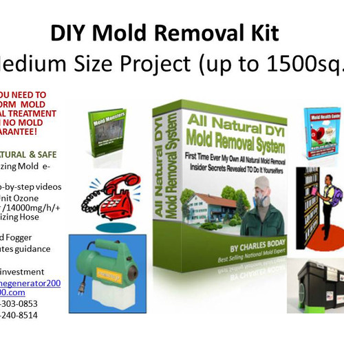 Diy mold removal allnatural mold removal kit big size project solutioingenieria Images