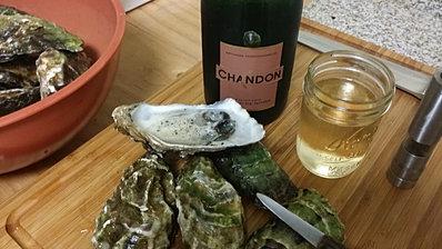 Jeff Furguson's Oysters