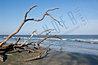 ds_beach01