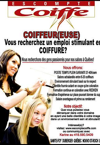 Dossier validation des acquis bp coiffure coiffeur maison for Acheter un salon de coiffure