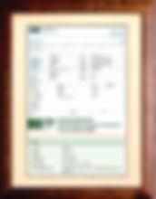 Finland Certificate frame mini.jpg