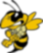 yellowjacket_muscle.png