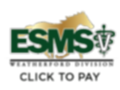 esms_pay.png