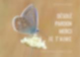 desole-pardonmerci-je-taime-hooponopono-