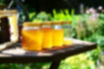 honey-352205_1920.jpg