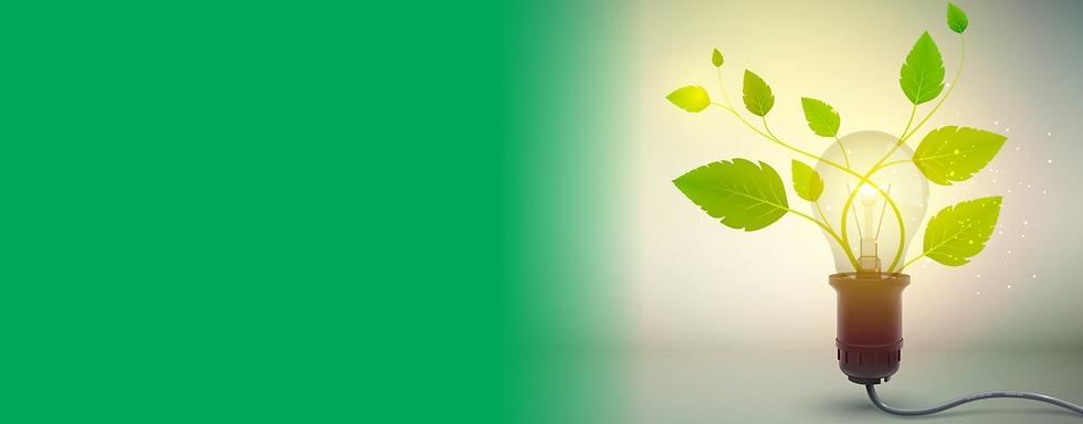 Pagina_Empresa Verde.png