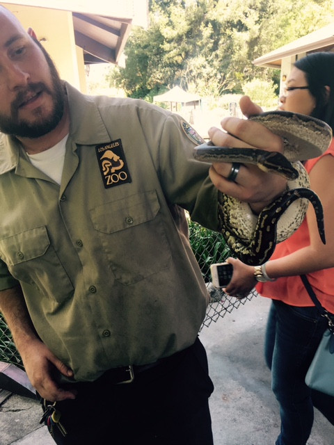Have A Birthday Party at The LA Zoo Its Zootastic