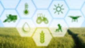 Transforming the farm BLOG.jpg