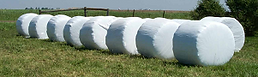 Bales wrapped with RaniWrap