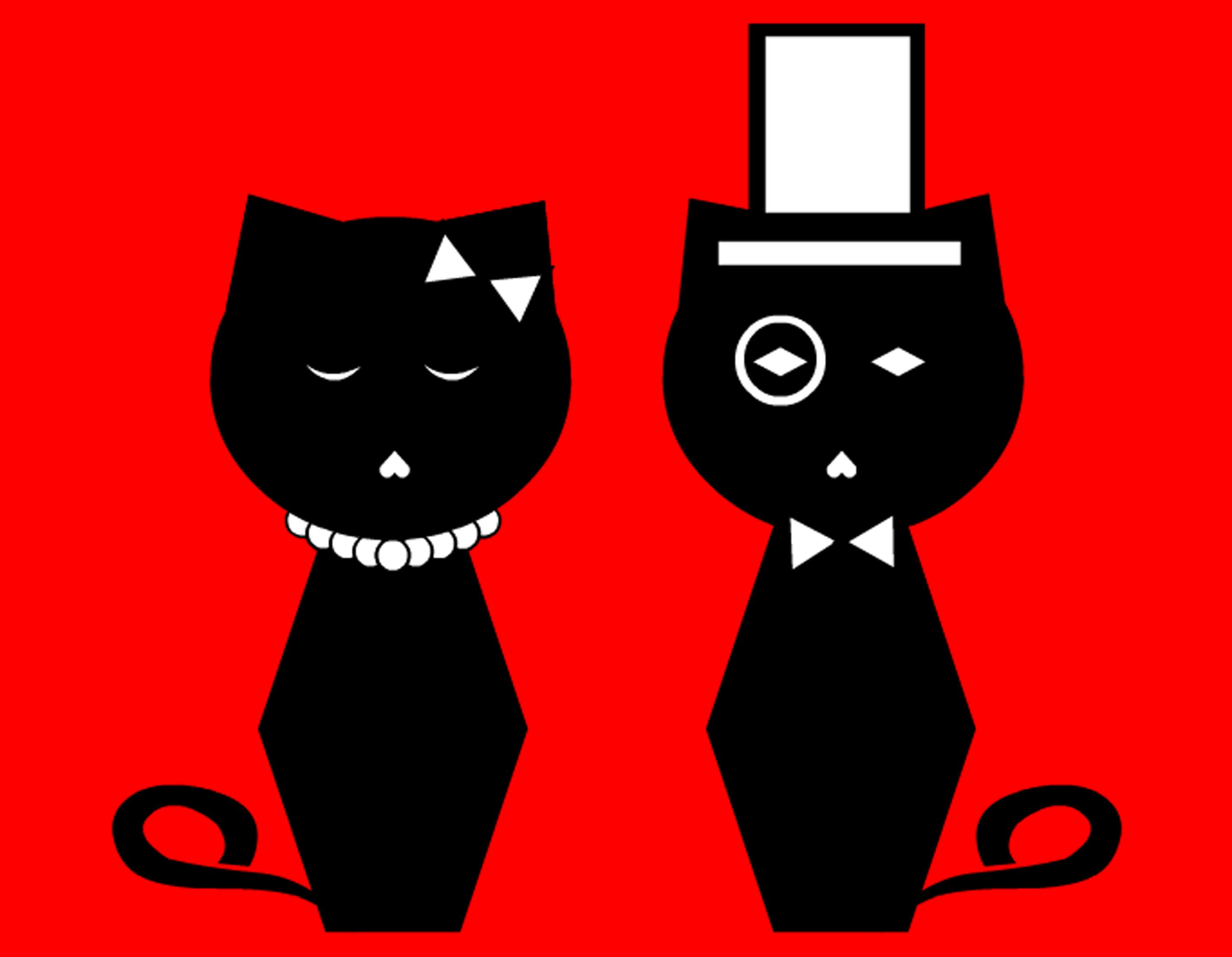The Noodle Kittens Kitten