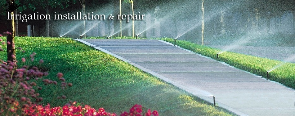 Spring Tx Lawn Service Pristine Outdoors.png
