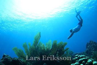 Snorkel-01.jpg
