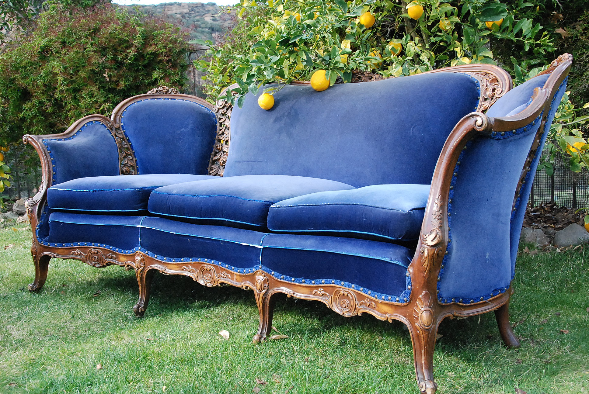 Salt Buffalo Vintage Furniture Rental Royal Blue Velvet Sofa