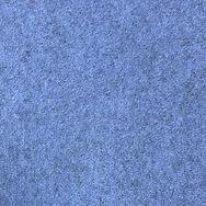 Buzziskin Light Blue High Res.jpg