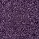 Vulcan Grape .jpg