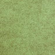 Buzziskin Lime High Res.jpg