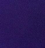 Vulcan Violet .jpg