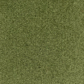 Aragon_Moss Low Res.png