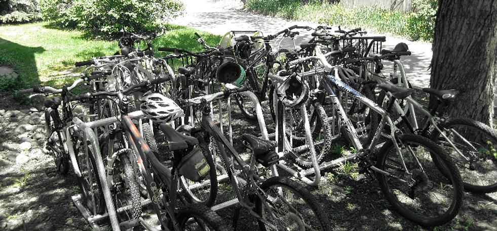 Emerald Mountain School's bike racks