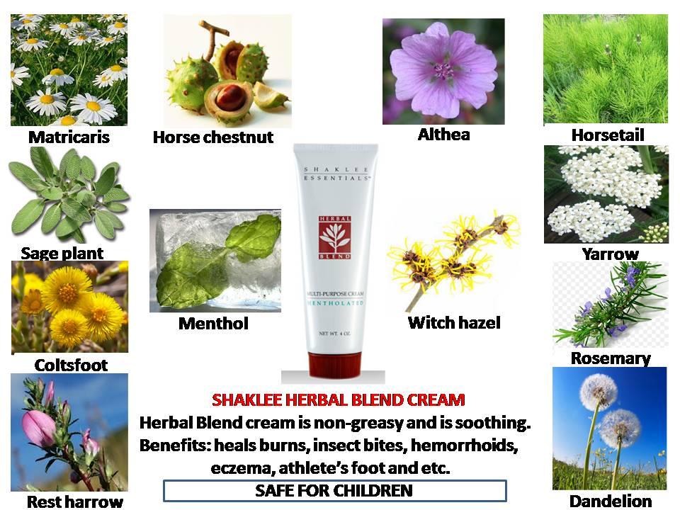 Image result for herba blend