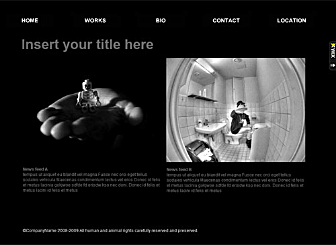 Photographers Utopia Template - Fully customizable Flash template perfect for the Photography market. Simply change to match your preferred colors, add your logo, text and images and you're ready to go.