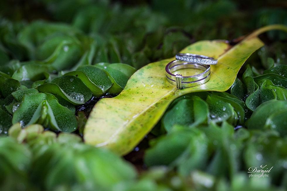 photographe mariage la runion - Photographe Mariage Seychelles