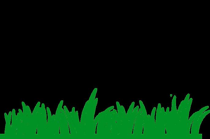 Transparent-Clipart-Image-grass-png-clip