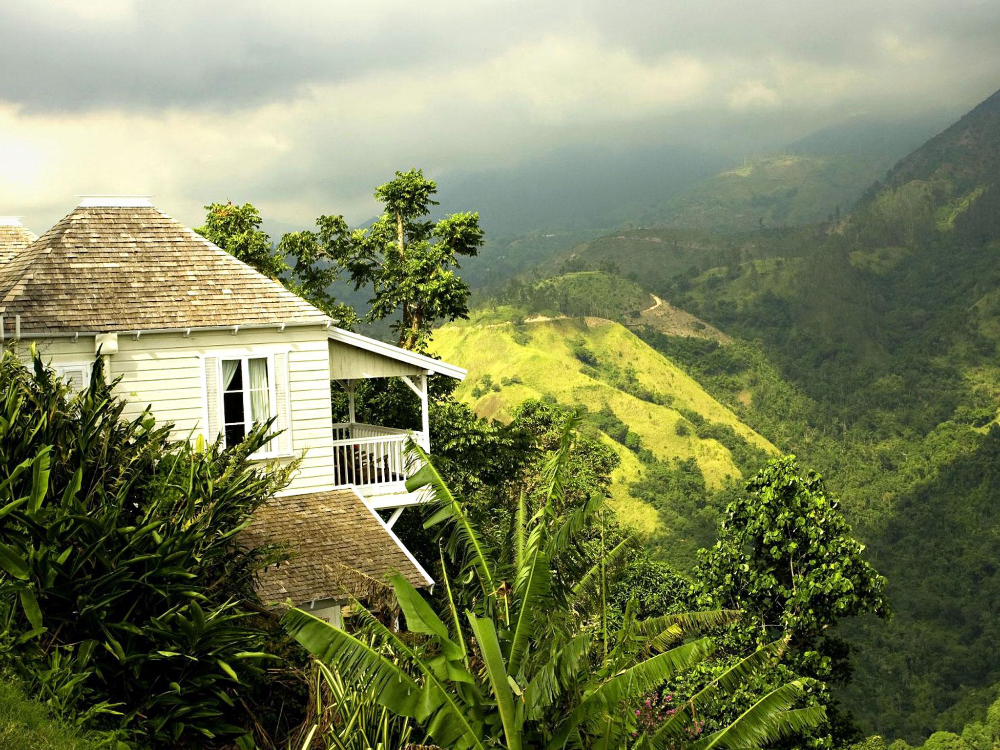 Jamaica Blue Mountain Coffee Strawberry Hill Misstravelous