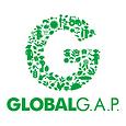 G_Logo_green_RGB-box.png