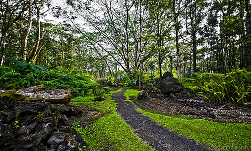 Lava Tree Trail