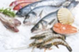pesce-congelato-POLOGEL.jpg