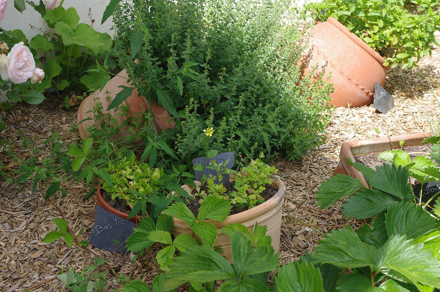Le jardin des cigognes chambre d 39 h tes insolite en loire atlantique - Jardin romantique definition nantes ...