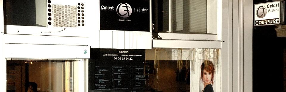 Celest fashion salon de coiffure black afro lyon for Salon afro lyon