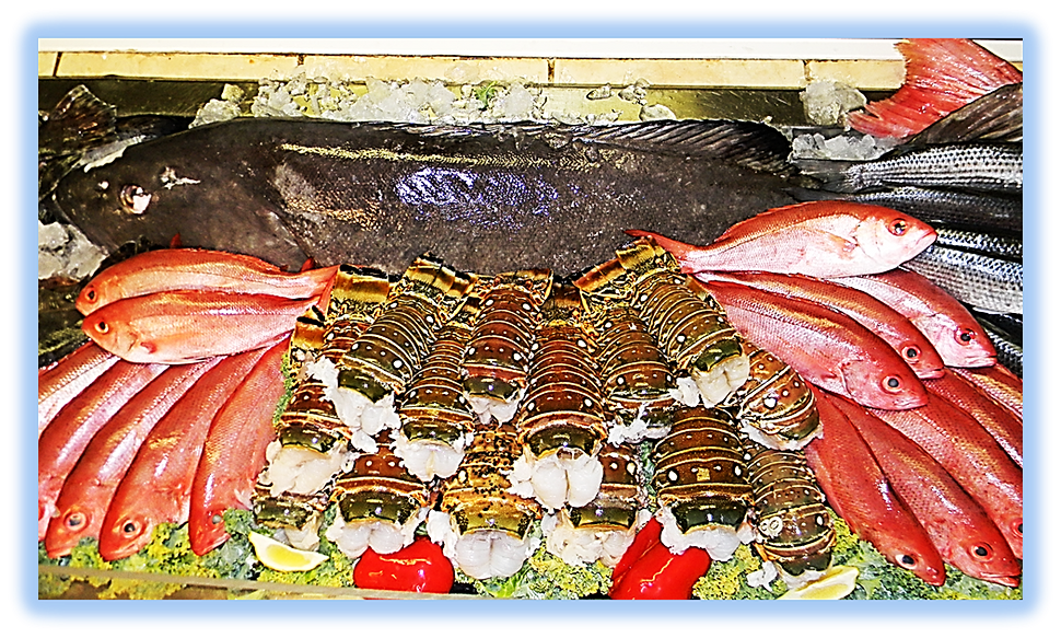 Kyles seafood market st augustine fl for Florida fish market