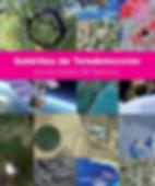 Satelites para la gestion del medio.png
