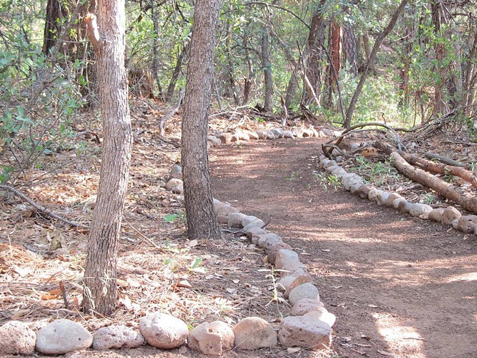 Kamp Kiwis Arizona Cabin Rentals Pine Az