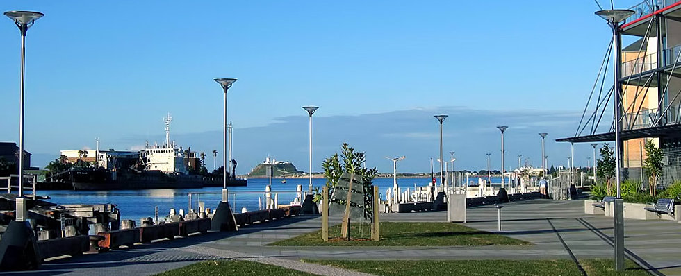 Residential Landscape Designers Newcastle : Newcastle harbour foreshore