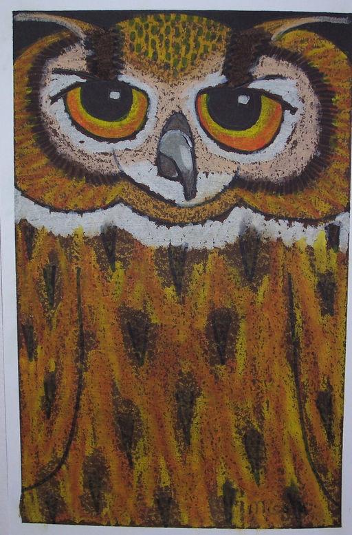 Owl oil pastel