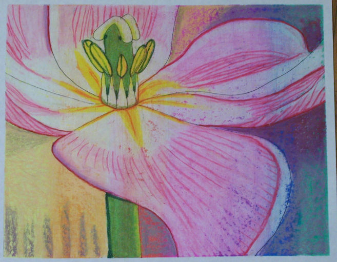 Bloom oil pastel and wc