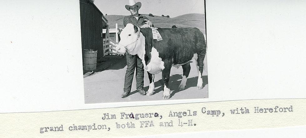 Livestock+-+Jim+Fraguero+1971.jpg