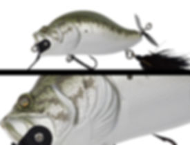 014_largemouth_bass.jpg