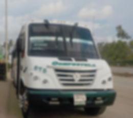 Bus-Compestala-green_edited.jpg