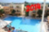 Дельфин Клуб 2012