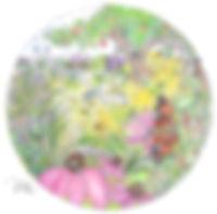 PollinatorEYESPYIllustration.jpg