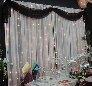 Organza Backdrop with Lights